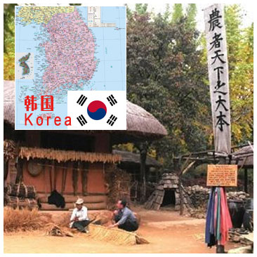 韩国Korea偏远地区邮编查询-TNT国际快递